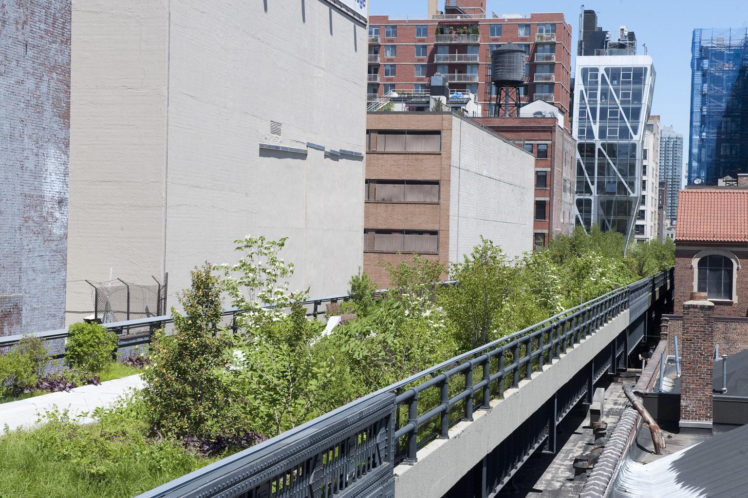 High Line Park NewYork entworfen von Diller+Scofidio