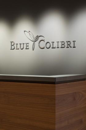 BlueColibri_01